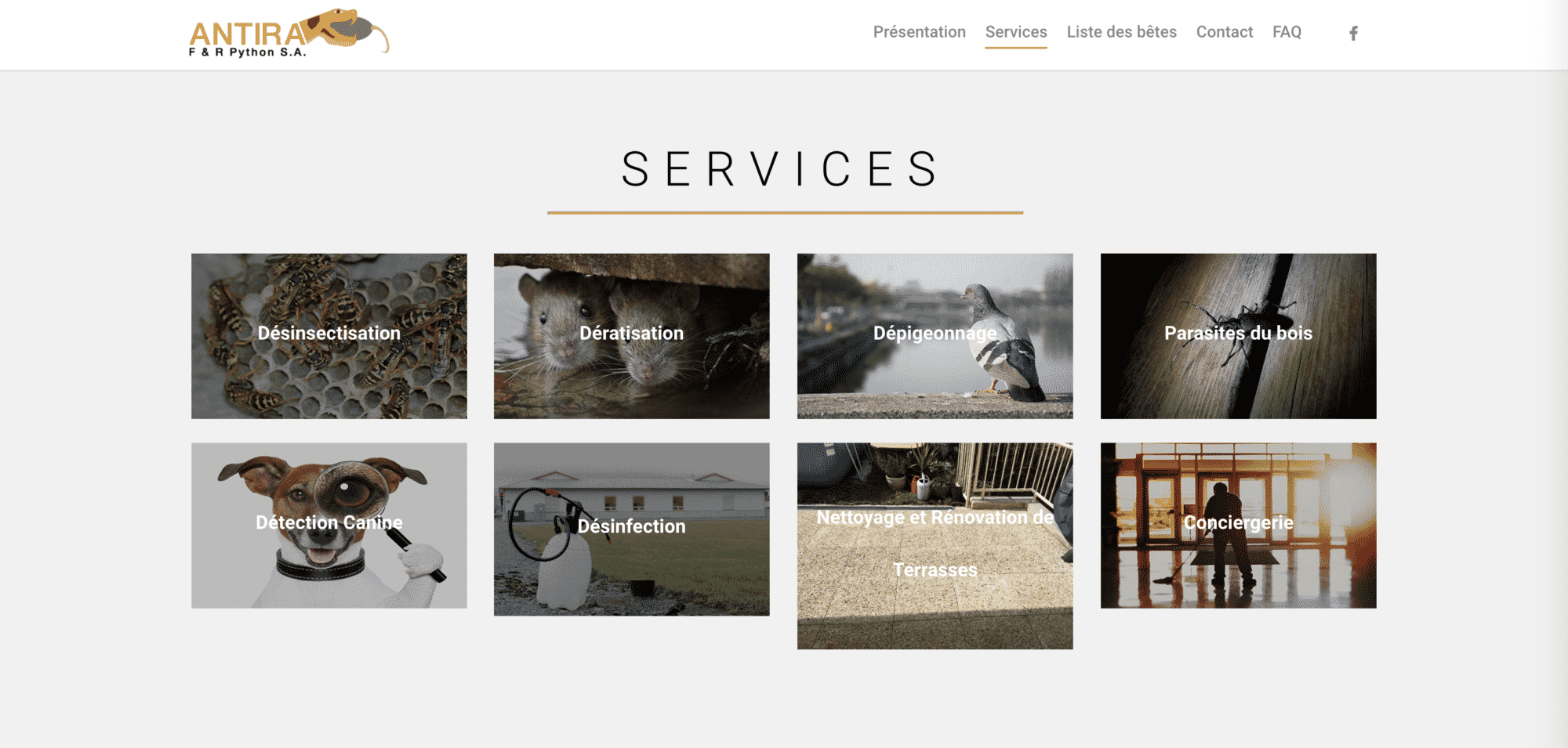 page services antira