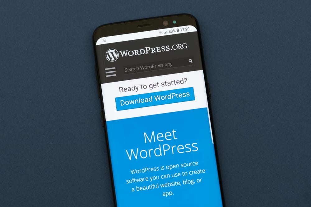 WordPress : De plus en plus à la portée de nos clients !