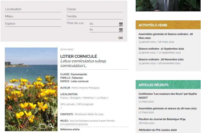 Société Botanique de France-page image de plante pour abonné
